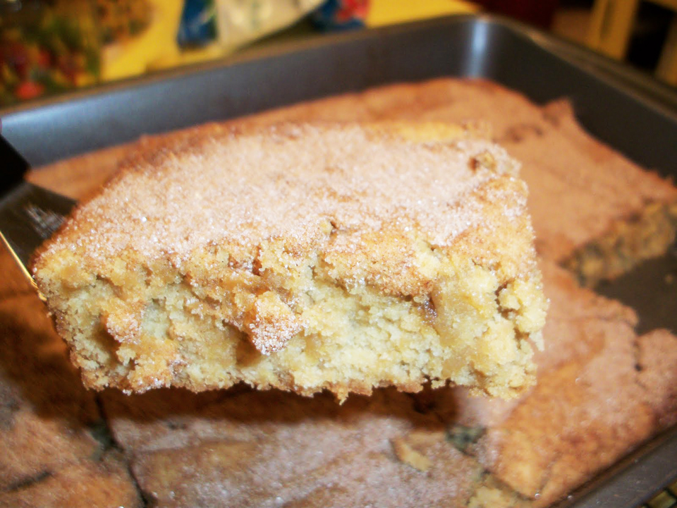 Cake Mix Snickerdoodle Blondies