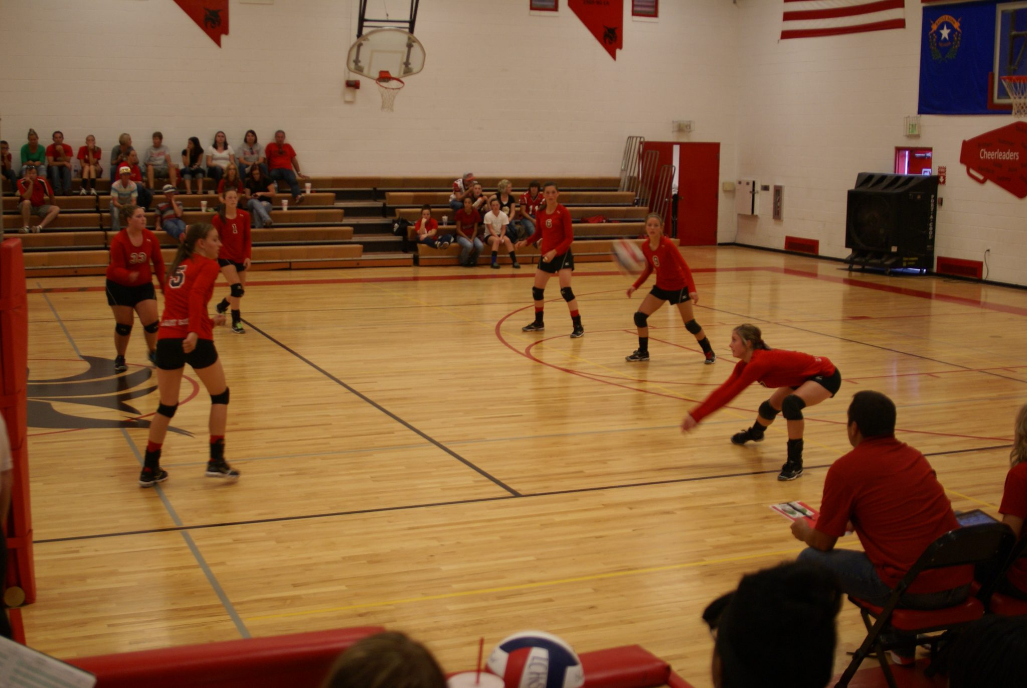 Lady Lynx sweep pair at home
