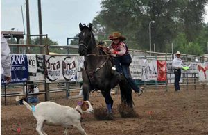 Local cowgirl competes in national rodeo