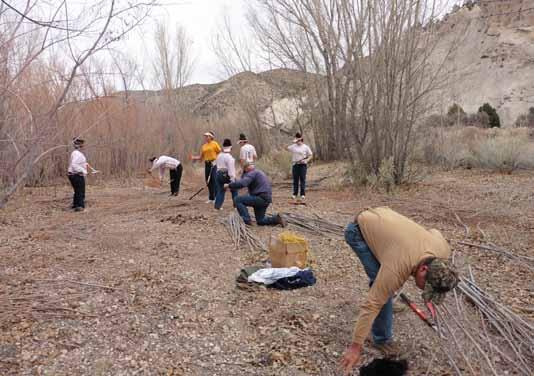 Caliente Youth Center members volunteer