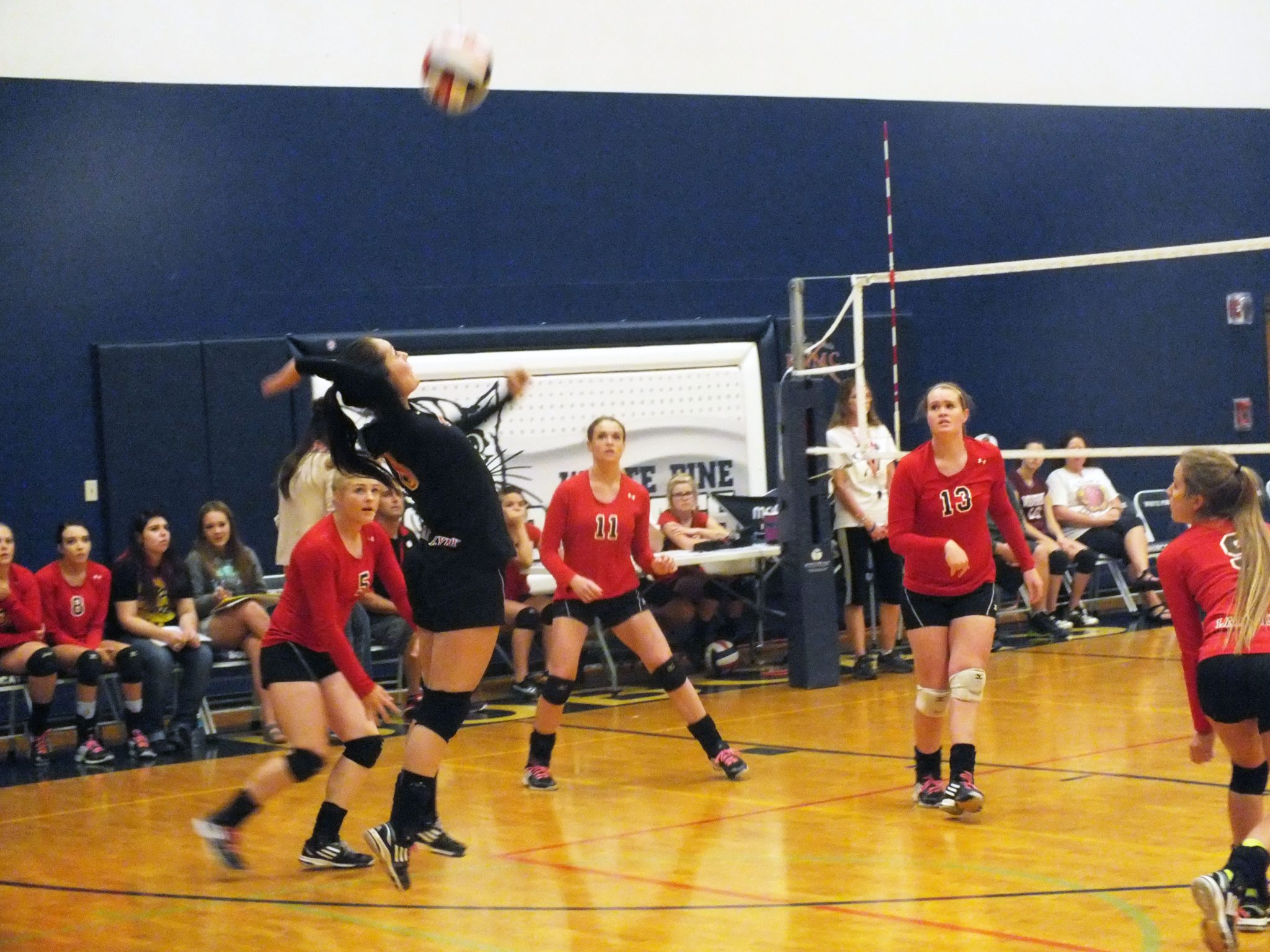 Lady Lynx take second in White Pine tournament
