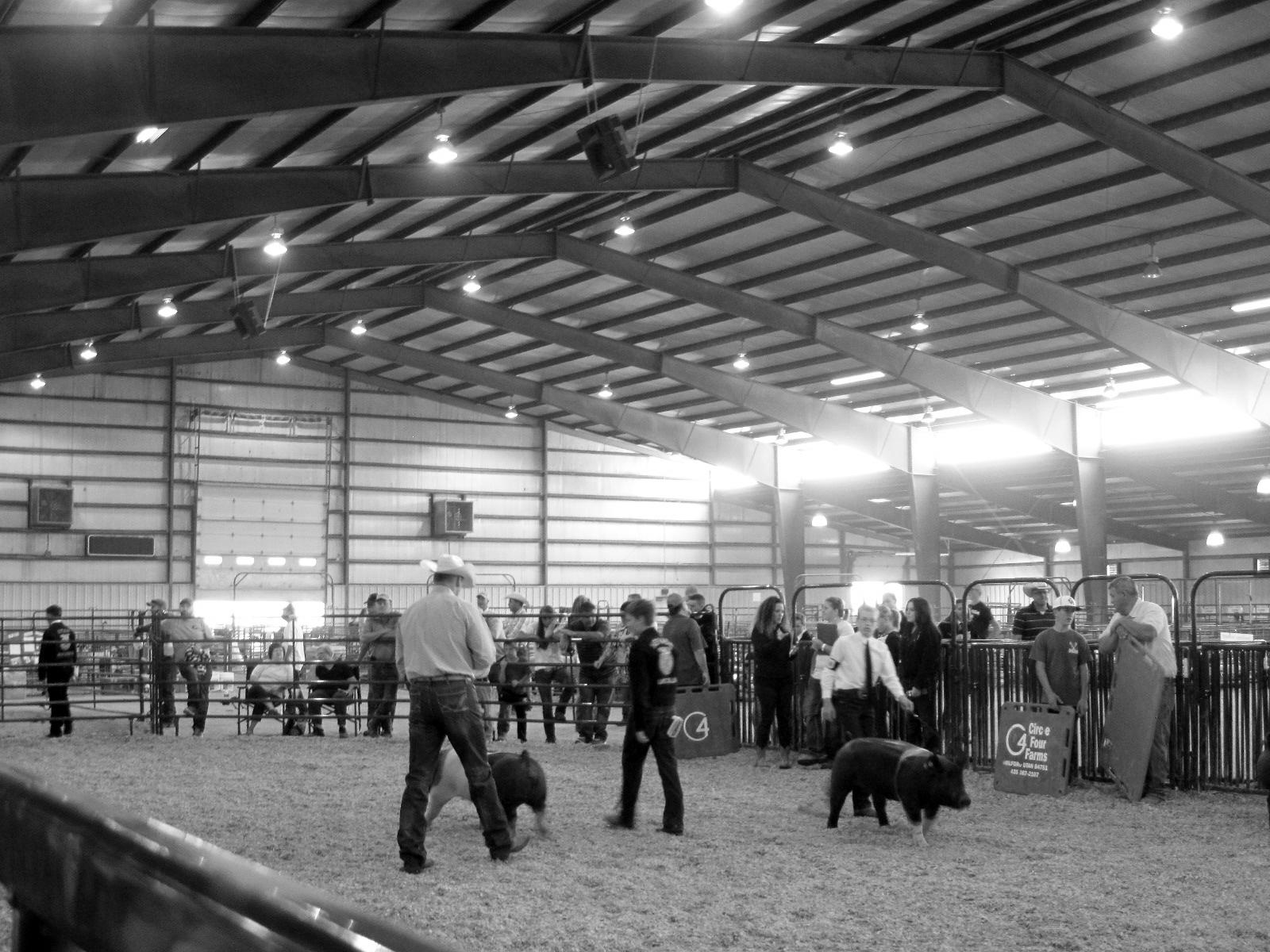 Lincoln County 4-H/FFA compete in several events