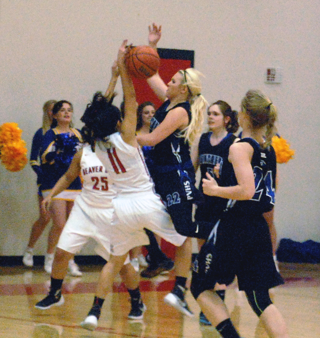 Lady Panthers lock up second playoff spot