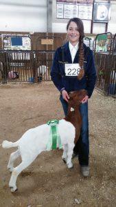 clark-county-fair-2